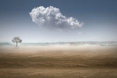 Landascape del desierto fotos de archivo