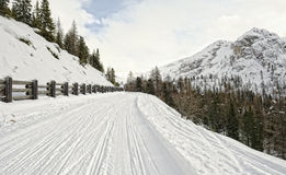 Landascape Dolomites. A winter landscape of the Dolomites in Italy stock photography