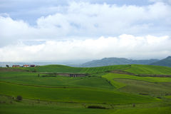 Landascape und Gras Stockfotos