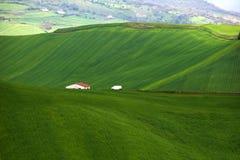 Landascape und Gras Stockfoto