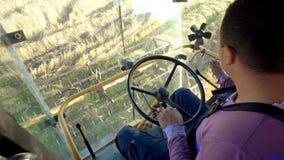 Landbouw combineert scherpe en het oogsten tarwe stock afbeeldingen