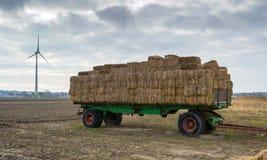 Landbouw de lentelandschap Royalty-vrije Stock Afbeelding
