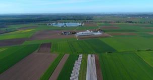 Landbouw, Europese landbouw, goed-verzorgde gebieden, hoogste mening, kleurrijke gebieden van landbouwers stock footage
