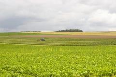 Landbouw in Frankrijk Royalty-vrije Stock Afbeeldingen