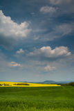 Landbouw Gebied - Grond royalty-vrije stock fotografie