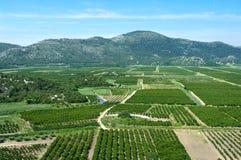 Landbouw gebied in rivier Neretva delt Royalty-vrije Stock Foto's
