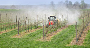 Landbouw, het bespuiten van bomen royalty-vrije stock afbeelding