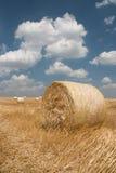 Landbouw - Hooiberg stock foto's