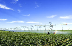 Landbouw hulpmiddel Stock Foto's