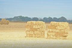 Landbouw Ierland Royalty-vrije Stock Foto's