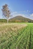Landbouw landschap Stock Foto