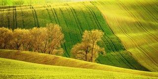 Landbouw landschap Royalty-vrije Stock Foto's
