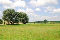 Landbouw landschap Royalty-vrije Stock Afbeeldingen