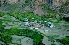 Landbouw lanscape in Noordelijk India Stock Foto's