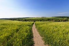 Landbouw met openbare weg royalty-vrije stock afbeelding