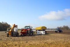 Landbouw scène Stock Afbeelding