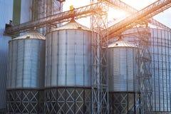 Landbouw silo's de faciliteit van de metaalkorrel met silo's Royalty-vrije Stock Afbeeldingen