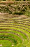 Landbouw Terrassen Inca in Moray, Peru stock foto's