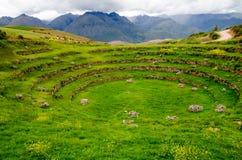 Landbouw Terrassen Inca in Moray, Peru royalty-vrije stock afbeeldingen