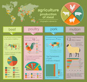 Landbouw, veeteeltinfographics, Vectorillustraties Royalty-vrije Stock Afbeelding