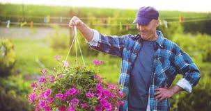 Landbouw zekere mannelijke tuinman die ingemaakte bloeminstallatie onderzoekt stock video