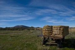 Landbouwaanhangwagen met strobalen stock afbeelding