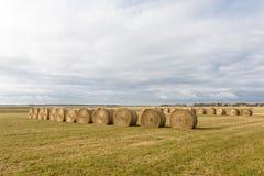 Landbouwachtergrond Stock Foto