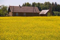 Landbouwbedrijf Royalty-vrije Stock Afbeelding