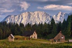 Landbouwbedrijf in bergen Stock Foto's