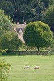 Landbouwbedrijf in Cotswolds Engeland Stock Fotografie