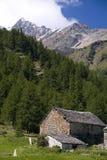 Landbouwbedrijf in de Alpen Stock Foto
