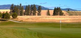 Landbouwbedrijf of de Cursus van het Golf Stock Foto's