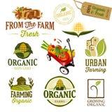 Landbouwbedrijf & de stad - Illustratie Royalty-vrije Stock Foto's