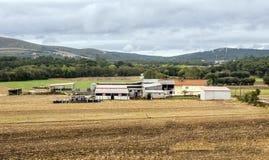 Landbouwbedrijf in de weiden royalty-vrije stock foto