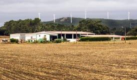 Landbouwbedrijf in de weiden stock afbeelding