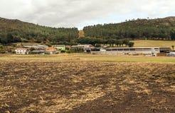 Landbouwbedrijf in de weiden royalty-vrije stock afbeelding