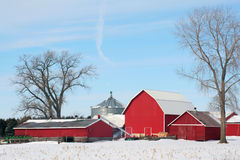 Landbouwbedrijf in de Winter Royalty-vrije Stock Afbeelding
