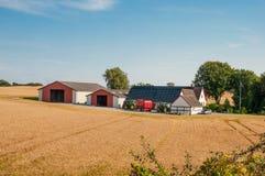 Landbouwbedrijf in Denemarken stock afbeelding