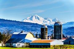 Landbouwbedrijf dichtbij de Matsqui-Dijk bij de steden van Abbotsford en Opdracht in Brits Colombia, Canada royalty-vrije stock fotografie