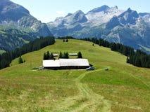 Landbouwbedrijf in een alpiene weide dichtbij Gstaad, Zwitserland stock fotografie