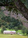 Landbouwbedrijf en berg Royalty-vrije Stock Foto's