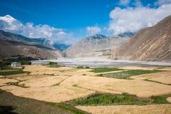 Landbouwbedrijf en berg in Kagbeni, Nepal Stock Afbeeldingen