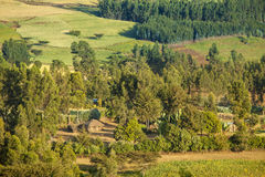 Landbouwbedrijf en huis in Ethiopië Stock Afbeelding