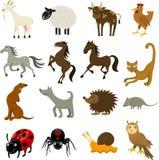 Landbouwbedrijf en huisdieren Royalty-vrije Stock Afbeeldingen