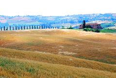 Landbouwbedrijf en landbouwgrond in Toscanië Stock Afbeelding