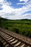Landbouwbedrijf en spoor stock afbeelding