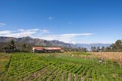 Landbouwbedrijf (finca) Op de Weg aan Saraguro, Ecuador Stock Afbeelding