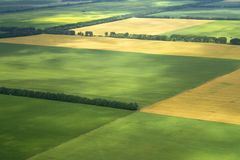 Landbouwbedrijf gecultiveerde Feield Stock Foto's
