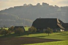 Landbouwbedrijf in het midden van aard zwitserland Stock Fotografie