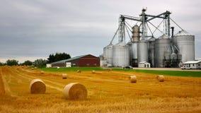 Landbouwbedrijf i stock afbeelding